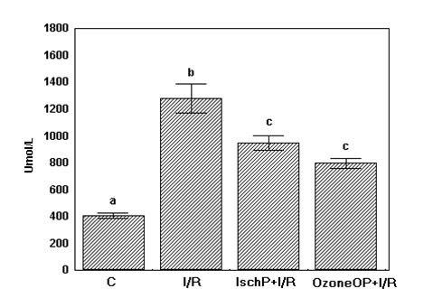 hepatic-preconditioning-figure-1