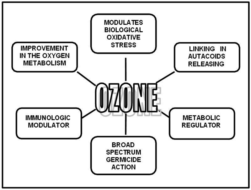 Figure 1. Biological effects of ozone