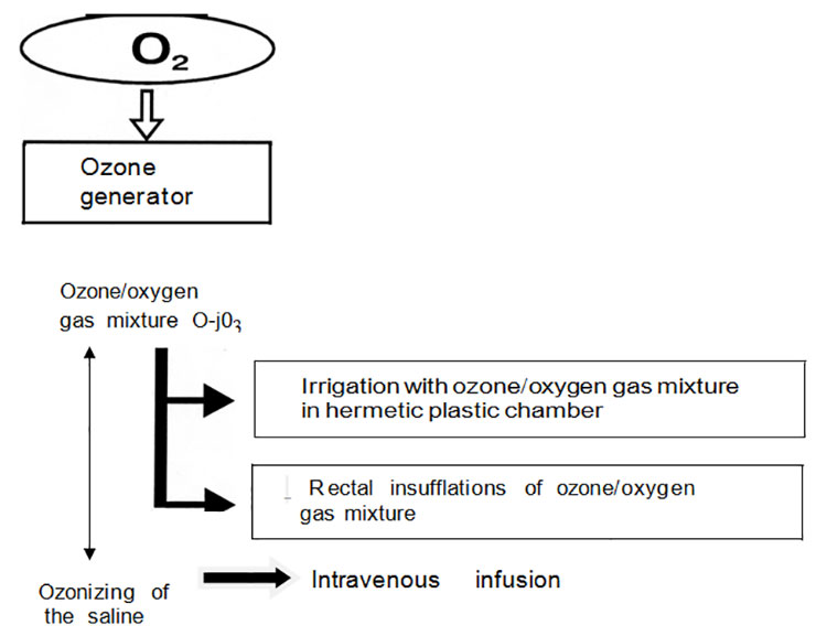 various-modes-of-ozone-oxygen-gas-mixture-application-in-patients-with-eczema-fig1