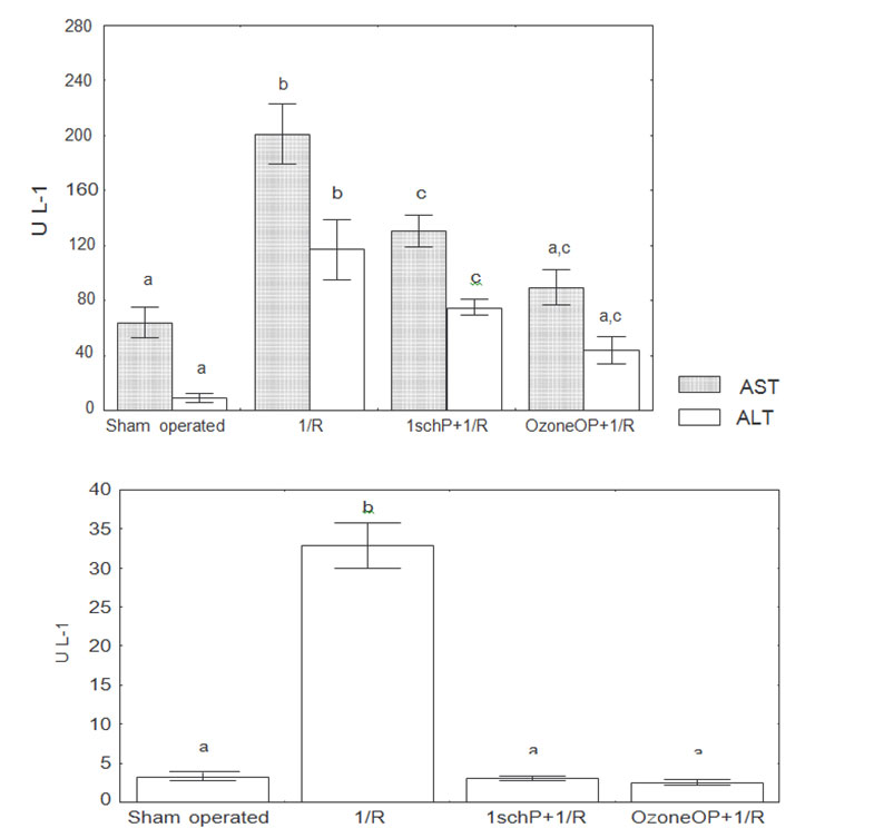 fig1-similar-protective-effect-of-ischemic-and-ozone-oxidative-preconditionings-in-liver-ischemiareperfusion-injury
